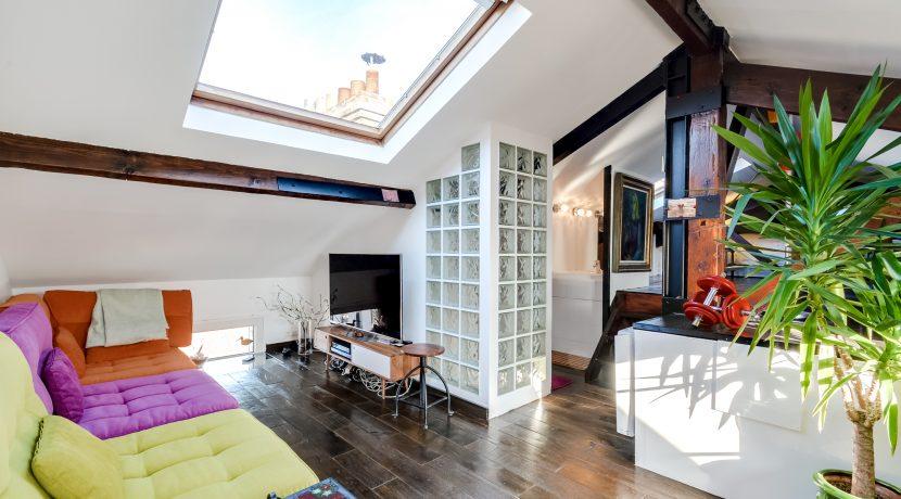 Dernier etage paris salon